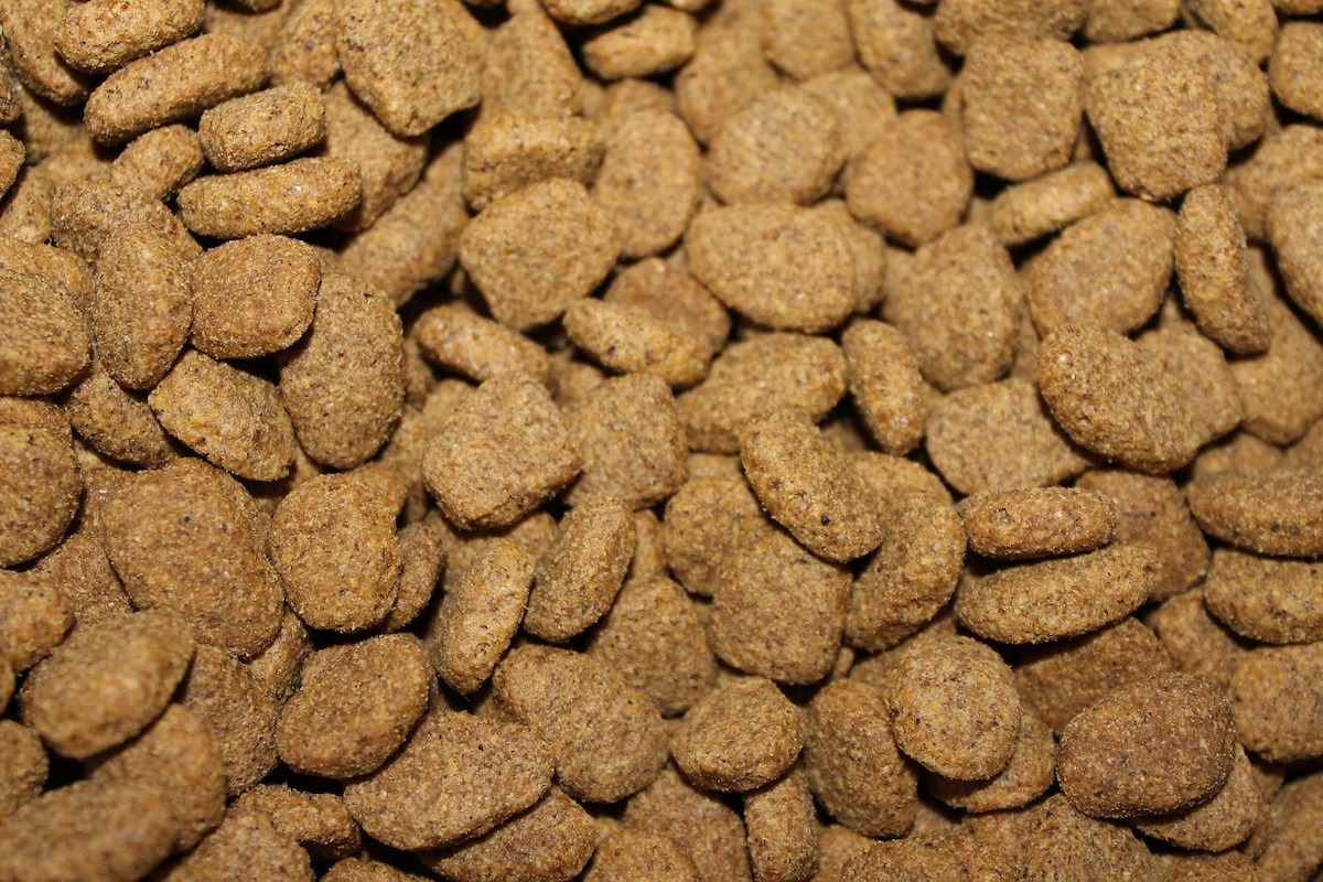 class-action-claims-simply-nourish-natural-pet-food-contains-synthet